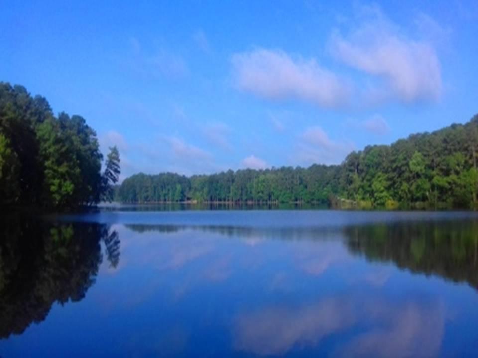 Un nuevo amanecer en Roosevelt State Park