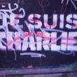 Pintada encontrada en París / Foto: Anais Máximo